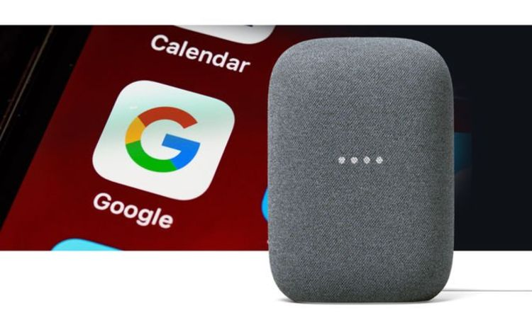 Google Home could unlock a Nest Audio feature familiar to Alexa users