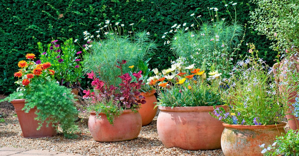 Spring Yard Cleanup Checklist for Gardens, Lawns, and Patios