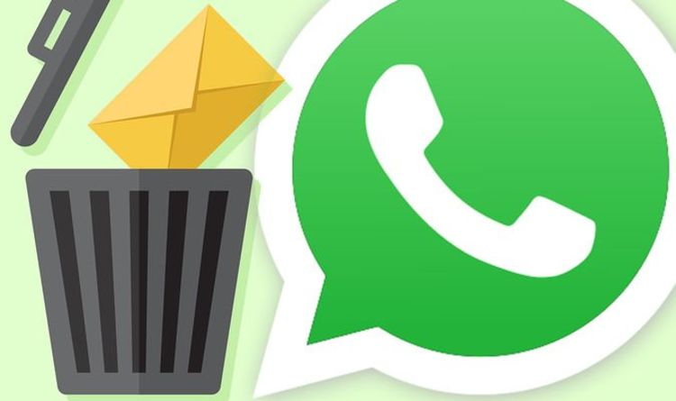 As Google confirms it can delete your Gmail, WhatsApp accounts suffer the same fate