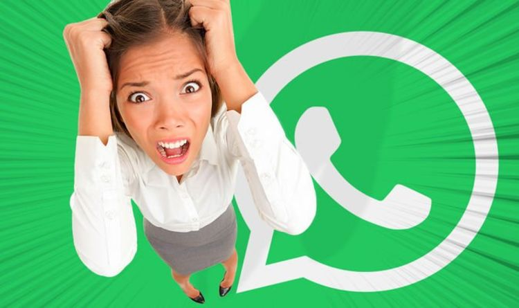 Awful WhatsApp scam is back, but there could be a fix on the way