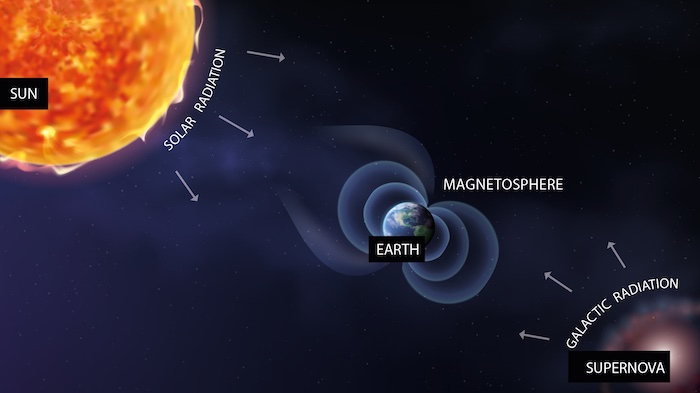 Earth's atmosphere and magnetosphere protect it from ionizing radiation.