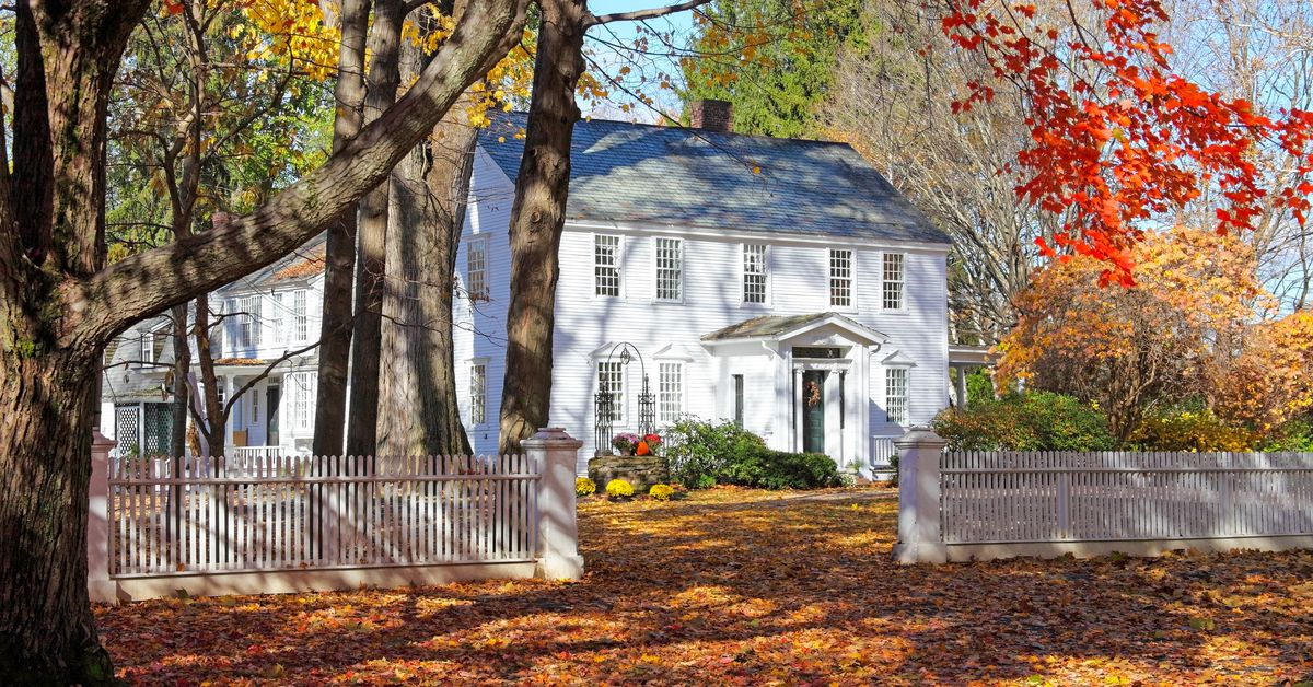 The 3 Best Tools to Pick Up Fall Leaves